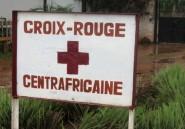 Centrafrique: six humanitaires tués