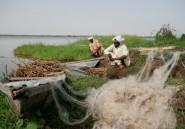 Lac Tchad: la vie reprend doucement sur les îles malgré la menace Boko Haram