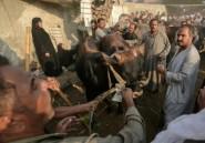 En Egypte, un Aïd al-Adha frugal pour beaucoup