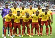Cameroun: nomination d'un comité de normalisation