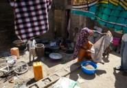 Nigeria: sept personnes tuées par Boko Haram dans un camp de déplacés
