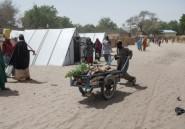 Nord-est du Nigeria: appel de fonds de l'ONU contre le choléra