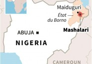 Nigeria: au moins 15 morts dans des attentats suicides