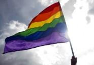 Égypte: au moins 6 personnes arrêtées pour un drapeau gay brandi