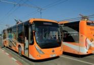 Une flotte de bus entièrement électrique