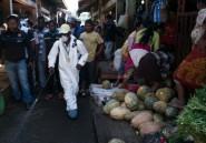 """Madagascar: le président appelle au calme dans la """"guerre"""" contre la peste"""