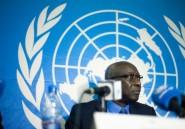 """La Centrafrique """"n'est pas en situation de pré-génocide"""" (responsable ONU)"""