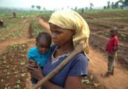 Dix ans après les émeutes de la faim, l'ONG CCFD pointe l'inaction internationale