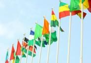 Le Parlement panafricain en pleine crise existentielle