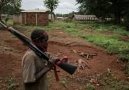 RD Congo et Centrafrique au menu d'un sommet des Grands Lacs