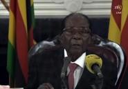 Zimbabwe: chronique de la chute annoncée du monument Mugabe