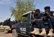 Niger: saisie de 13 tonnes de médicaments contrefaits en provenance d'Inde