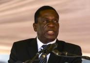 "Emmerson Mnangagwa, le ""Crocodile"" enfin"