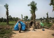 RDC: les déplacés, premières victimes des ADF