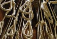 """Egypte: pendaison de 15 hommes jugés coupables de """"terrorisme"""""""
