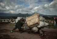 RDC: l'armée lance une nouvelle opération contre des rebelles ougandais