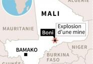 Mali: 13 civils maliens et burkinabés tués dans l'explosion d'une mine
