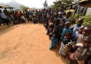 Séparatistes anglophones: le Nigeria assure le Cameroun de son soutien