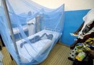 La Côte d'Ivoire prend des mesures préventives contre la fièvre hémorragique de Lassa