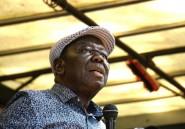 Zimbabwe: malade, le chef de l'opposition nomme un remplaçant