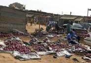 Conflit agriculteurs-éleveurs: le Nigeria déploie des troupes