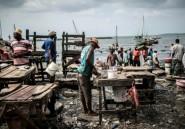 L'union de Zanzibar avec la Tanzanie contestée en justice