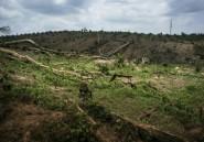 Au Liberia, la population veut voir enfin reconnus ses droits sur la terre