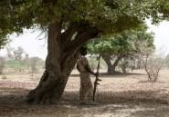 Nigeria: des lycéennes enlevées par Boko Haram libérées par l'armée
