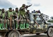 Est de la RDC: 7 morts dans une nouvelle attaque de rebelles ougandais