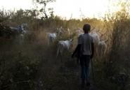 Conflit pastoral: un couvre-feu imposé dans le centre du Nigeria