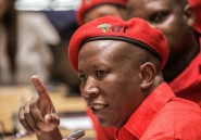 Afrique du Sud: le radical Julius Malema courtisé par le président