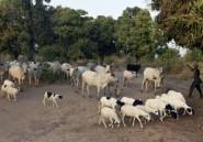 Le conflit pastoral fait 25 morts de plus dans le centre du Nigeria