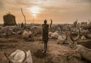 Soudan du Sud: encore un nouveau ministre pour relancer l'économie