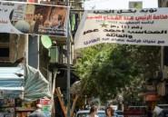 Les coptes affichent leur soutien