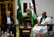 Sahara occidental: le Conseil de sécurité pousse pour redémarrer les négociations
