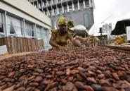 Cacao: accord Côte d'Ivoire et Ghana sur les prix