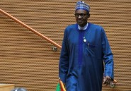Nigeria: le président Buhari reçu par Donald Trump le 30 avril