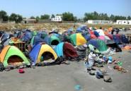 Niger: 28.000 migrants rapatriés d'Algérie depuis 2014 (ONU)