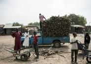 Nigeria: 21 morts dans des attaques de Boko Haram dans le nord-est