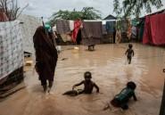 Inondations et choléra: une saison des pluies au camp de réfugiés de Dadaab