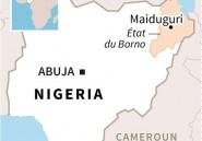 """Opérations """"en cours"""" contre Boko Haram dans le bassin du lac Tchad (ministre nigérien)"""