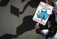 Kenya: trois rhinocéros tués par des braconniers