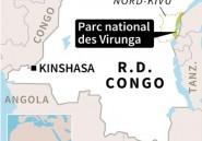 RDC: une garde tuée et deux touristes britanniques enlevés dans les Virunga (direction du parc)