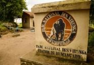 RDCongo: silence autour des deux Britanniques enlevés dans le parc des Virunga