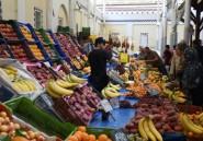 """Tunisie: """"vraie reprise"""" du tourisme après des années difficiles"""