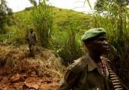 RDC: dix rebelles ougandais ADF tués près de Beni (armée)