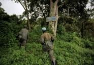 Insécurité en RDC: le parc des Virunga fermé aux touristes jusqu'