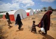 """Somalie: l'ONU réclame le """"libre passage de l'aide humanitaire"""""""