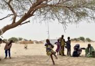 Niger: 16.000 déplacés civils dans l'ouest nigérien près du Mali