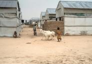 Nigeria: inquiétudes sur le retour des déplacés de Boko Haram